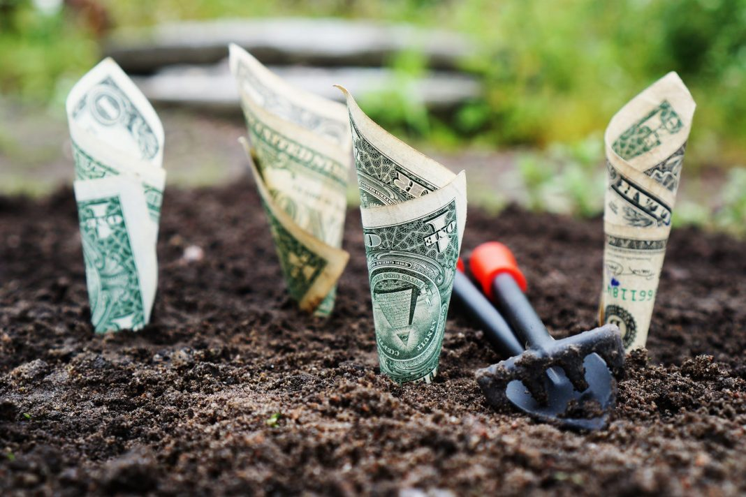 Small business loans for felons help grow business